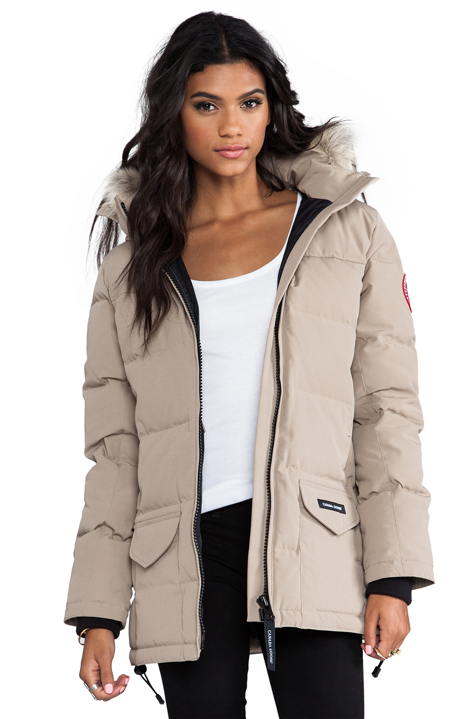 Best Canada goose in Toronto, ON - Yelp