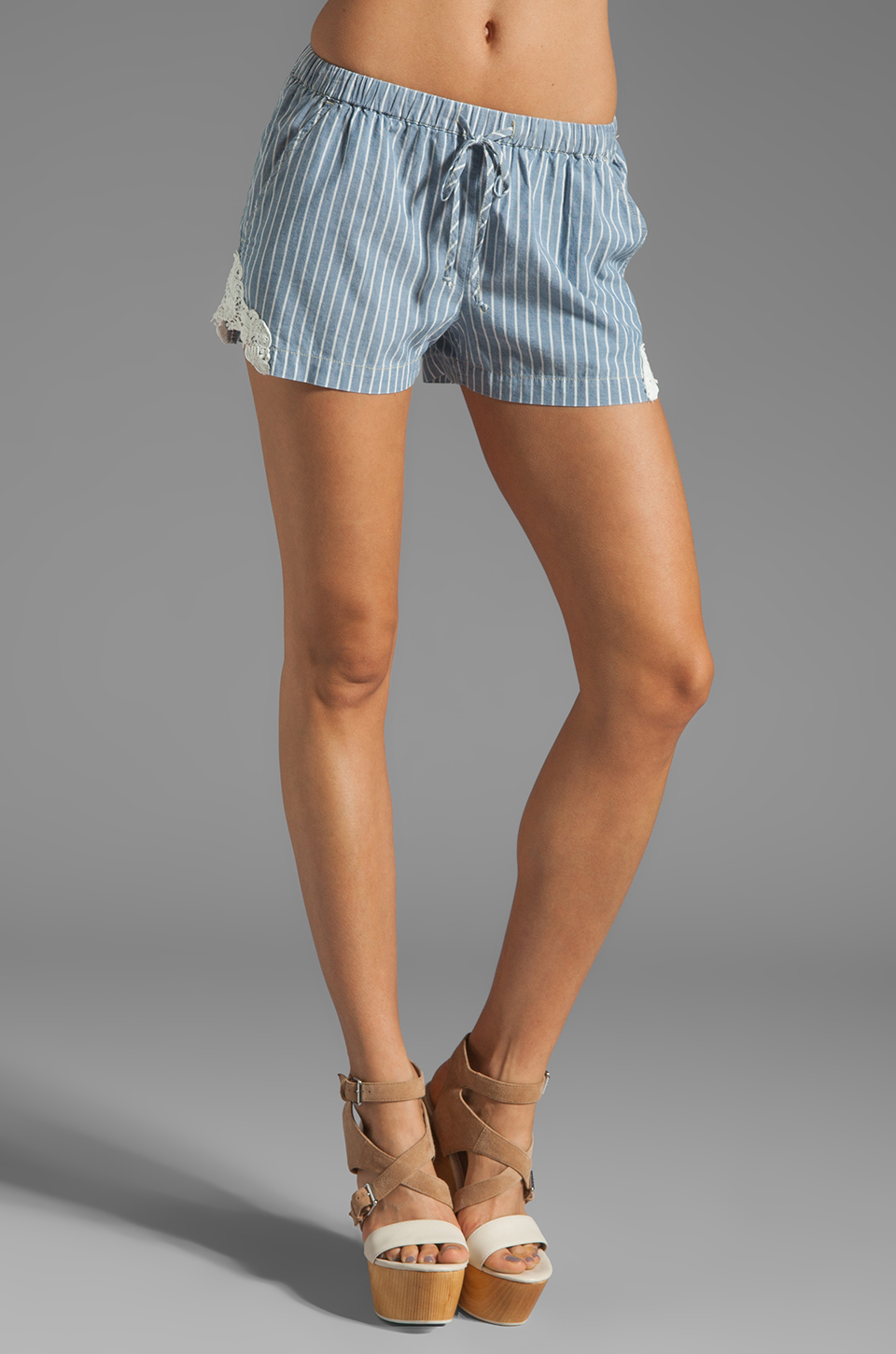 C&C California Stripe Short in Chambray Multi