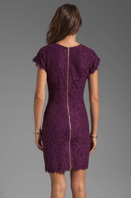 Diane von Furstenberg Wanda Dress in Purple Rose