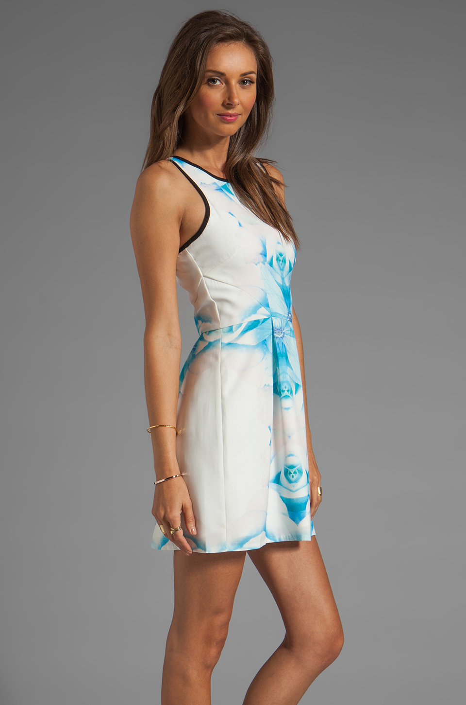 Finders Keepers Let's Get Back Dress in Rose Print Blue