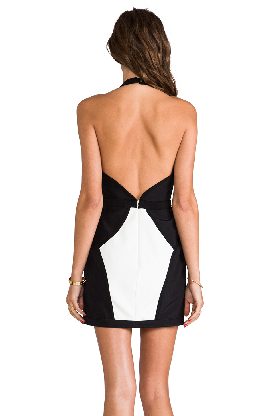 Finders Keepers Winter Birds Dress in Black/Ivory