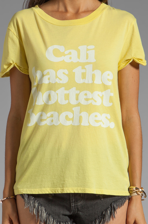Local Celebrity Cali Beaches in Citrus