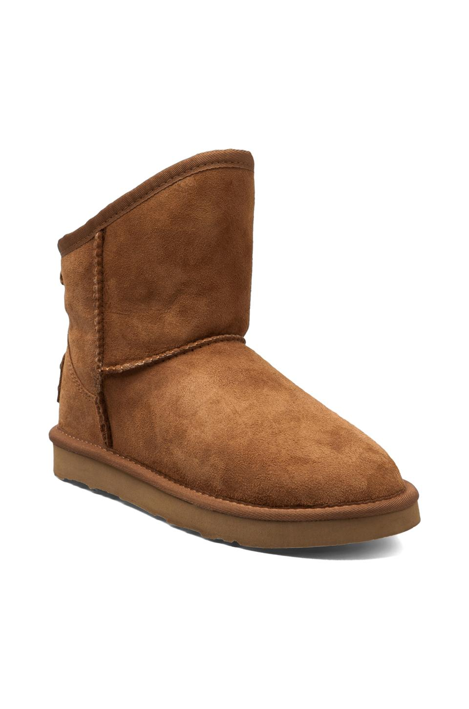 Australia Luxe Collective Cosy Extra Short with Sheep Shearling in Chestnut