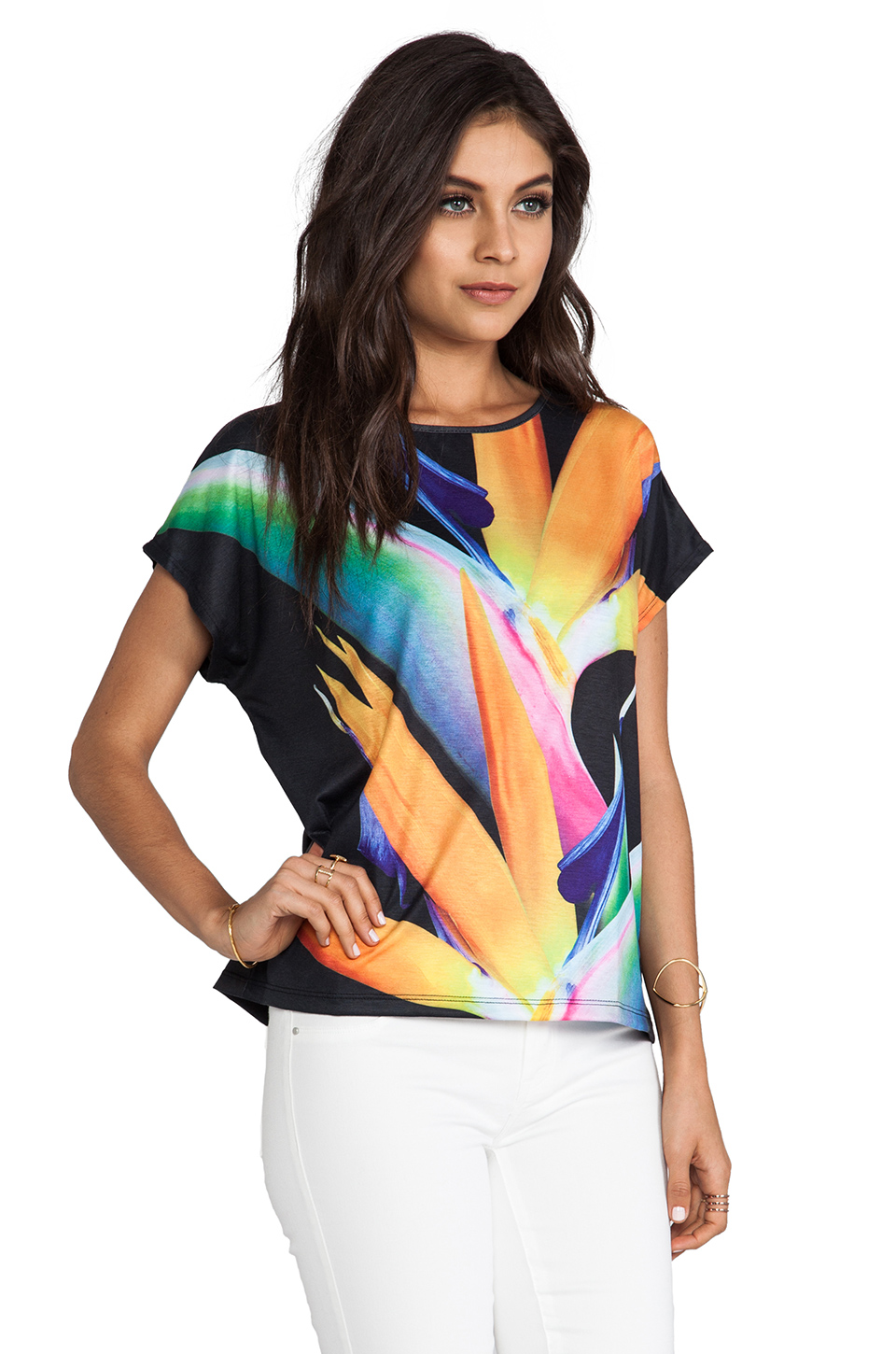 Lovers + Friends Lovers + Friends Beach Tee in Birds of Paradise