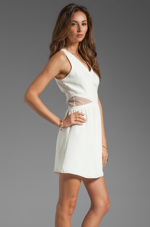 Parker Neptune Mesh Dress in Linen Combo