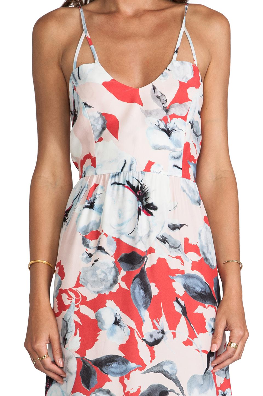 Parker Kisa Dress in Strawberry Dorset
