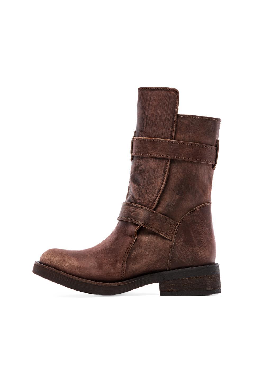 steve madden caveat boots gold gladiator sandals